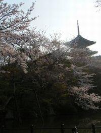 Kiyomizu4