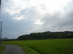 Rinkei1
